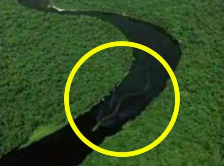 W rzekach Borneo pływa trzydziestometrowy wąż