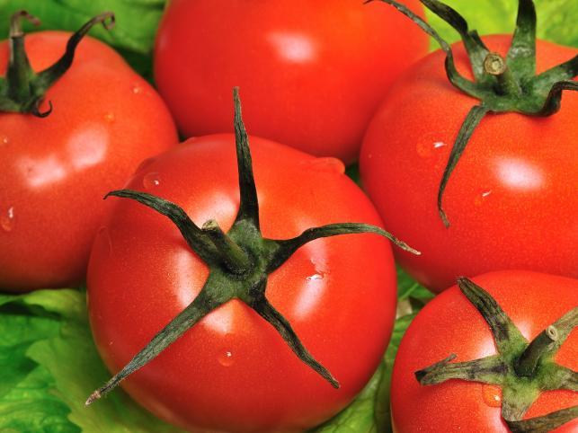 CBA: Producent pomidorów mógł wyłudzić nawet 30 mln zł