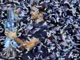 Roger Federer po wygranej Mistrzostw Świata w tenisie ziemnym ATP w singlu mężczyzn