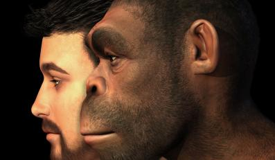 Co w ewolucji poszło nie tak?