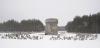 Tutaj znajdował się obóz zagłady w Treblince