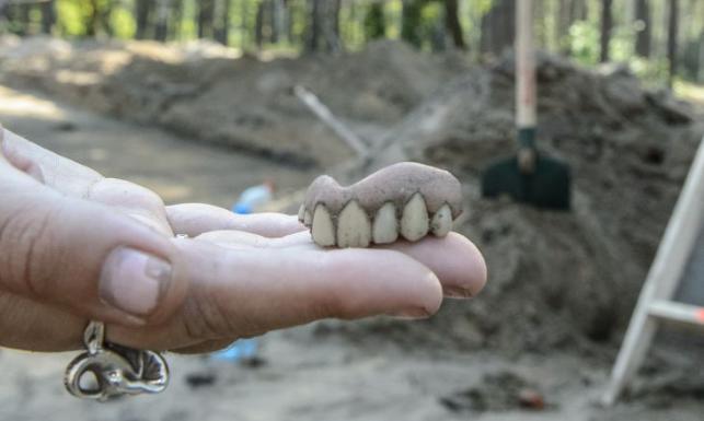 Makabryczne odkrycie w Sobiborze. Niemcy próbowali zatrzeć wszystkie ślady
