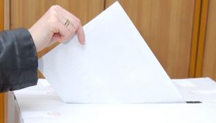 Socjolog o wyborach: Palikot wysysa SLD