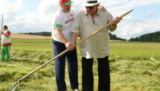 Aleksandr Łukaszenka i Gerard Depardieu przy koszeniu trawy / fot. serwis prasowy prezydenta Białorusi
