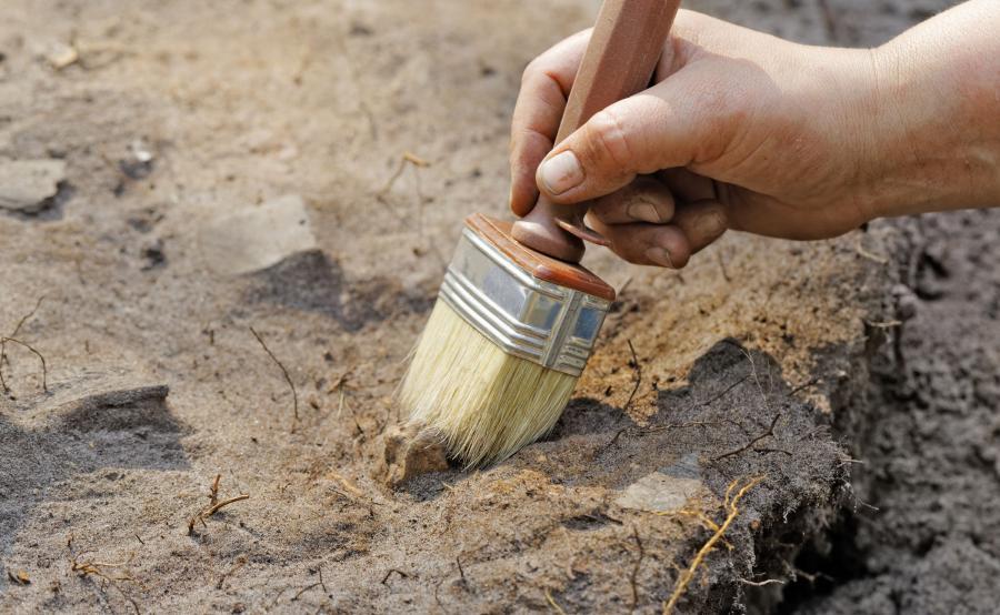 Archeolog podczas wykopalisk